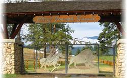 Chief Joseph Ranch In Darby Montana